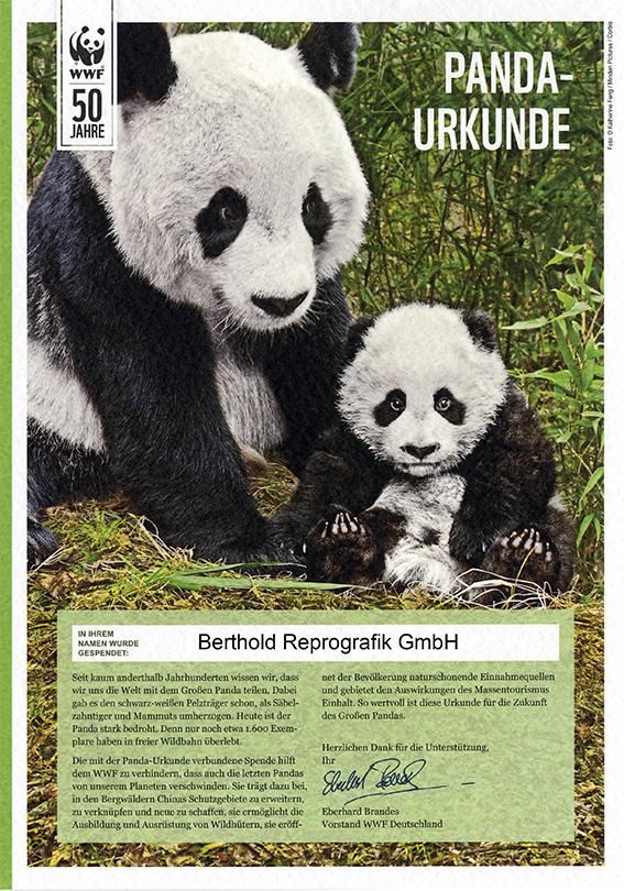 Panda Urkunde