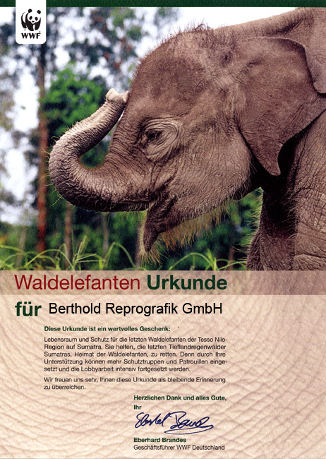 Waldelefanten Urkunde